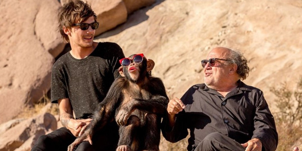 """Watch Danny DeVito in One Direction's """"Steal My Girl"""" Video"""