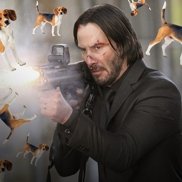 5 Reasons You Should Never Kill the Dog In Movies
